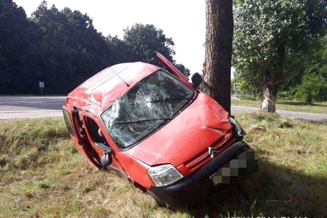 ДТП біля Сальника: водійка на Citroen злетіла з дороги та врізалась у дерево