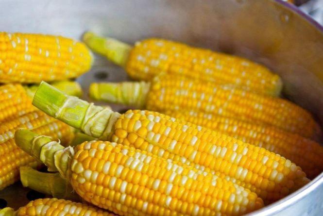 Блогерів, фермерів та кухарів запрошують на Фестиваль солодкої кукурудзи