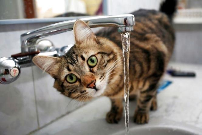 У Вінниці на Замості на два дні відключать воду (Перелік адрес)
