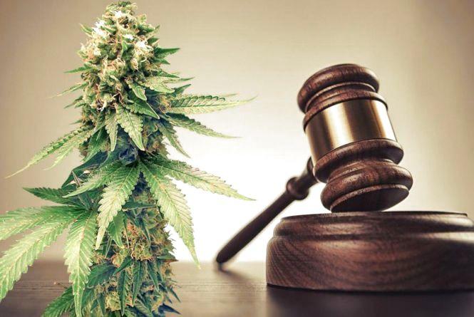 Умовне покарання для наркодиллерки підтримав прокурор. А судді не витримали