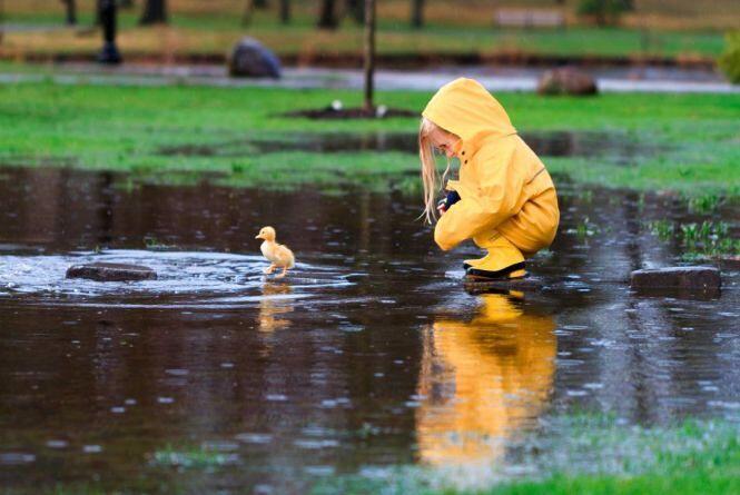 Дощі і зниження температури: у Гідрометцентрі розповіли про погоду на тиждень