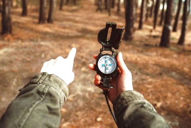 Тест. Чи зможете ви вижити заблукавши в лісі?