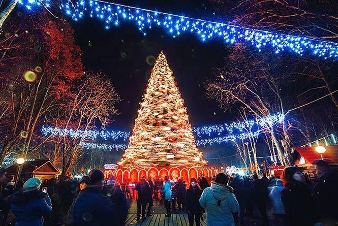 Вінниця в Instagram. Кращі фото за 23 - 28 грудня