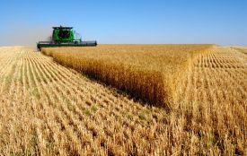 Верховна Рада ухвалила закон про ринок землі. Що далі?