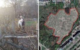 Таємне життя парку Дружби народів: як «спорткомплекс» розібрали на городи