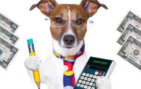 Скільки газу можна купити за вашу собаку? Калькулятор