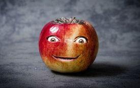 Тест: це дуріан чи пітайя? Наскільки добре ви розбираєтеся в екзотичних фруктах