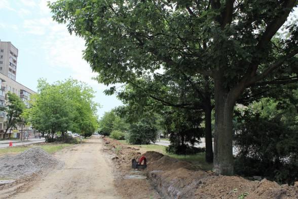 Ближче до вулиці Первозванного (Стахурського) дерев стає більше.