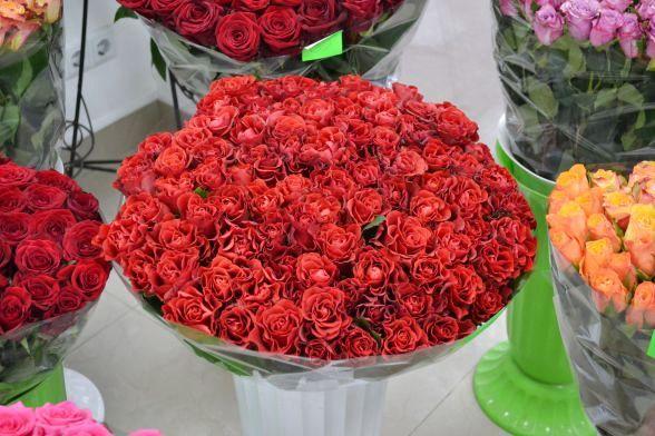 Вінницькі троянди