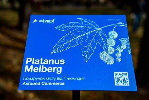 Табличка з назвою висаджених дерев у парку