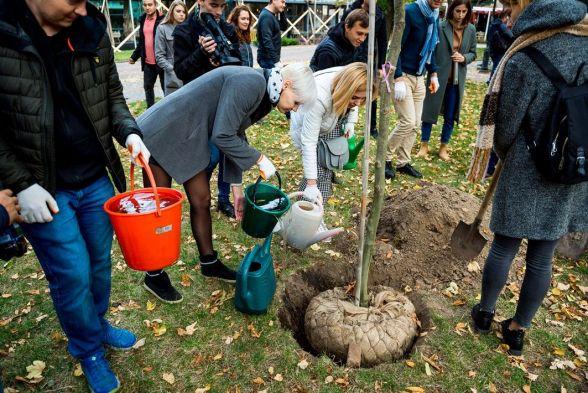 Усі висаджені дерева щедро поливали водою